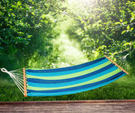 Relaxing on hammock Stock Images