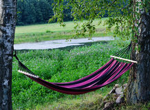 Relaxing on hammock in garden Stock Photography
