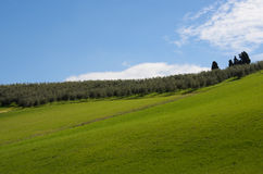 Green hill Royalty Free Stock Photo
