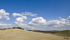 Relaxing landscape of tuscan Stock Photos