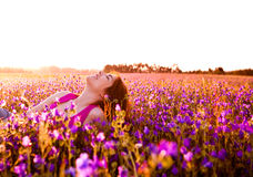 Relaxing on the meadow Stock Images