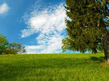 Relaxing nature scenery Stock Image
