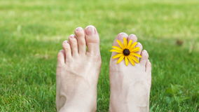 Relaxing pedicure and manicure with a pink rose flower.  stock footage