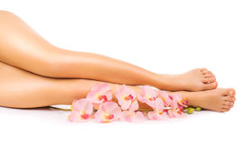 Relaxing pedicure with a pink orchid flower Stock Photos