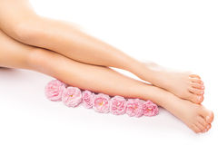 Relaxing pedicure with a pink rose flower Stock Image