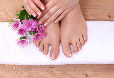 Relaxing pink manicure and pedicure with a orchid Stock Photos