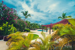 Relaxing on remote Tropical Paradise beach in Stock Image