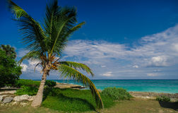 Relaxing on remote Tropical Paradise beach in Stock Images