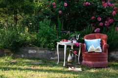 Relaxing in roses garden with a book Stock Photos