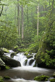 Relaxing scenic in the Great Smoky Mountains USA Stock Photography