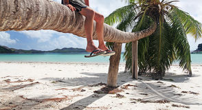 Relaxing in The Seychelles. Chilling and taking in the Beauty of The stunning tropical main island of Mahe in The Seychelles Royalty Free Stock Photo