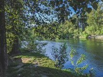 Relaxing in the shade. Grass, river, trees, foliage, flow, flowing, leaves, brush, dirt, picnic, rest, day, outside, outdoors, creek, travel, camping, explore stock image