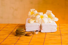 Relaxing spa massage. Royalty Free Stock Photography
