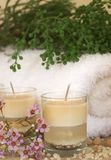 Relaxing spa scene Royalty Free Stock Photos