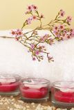 Relaxing spa scene Stock Images