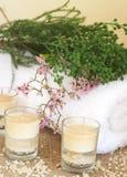 Relaxing spa scene Stock Photos