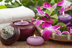 Relaxing spa treatment (2) Royalty Free Stock Photo