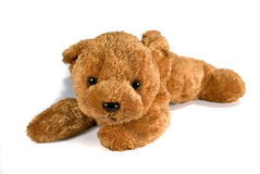 Relaxing Teddy Bear Royalty Free Stock Image