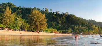 Relaxing on Thai paradise beach with palms trees Stock Images