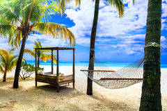 Relaxing tropical holidays with hammock under palm tree. Mauriti Royalty Free Stock Image