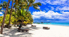 Relaxing tropical holidays in Mauritius island Royalty Free Stock Image
