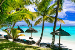 Relaxing tropical scenery -beauti palm beach in Mauritius island stock photos