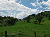 Relaxing view to green meadow and blue sky with some white clouds. Peaceful place with fresh air and clean nature Royalty Free Stock Photo