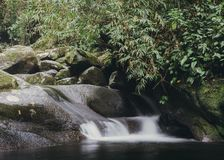 Relaxing zen stream in the forest Royalty Free Stock Photography