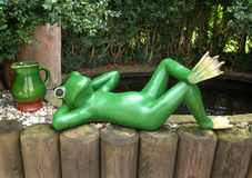 Relaxted green frog Stock Photo