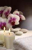 relaxtionbrunnsort Arkivfoto