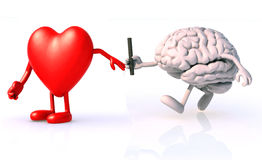 Relay between brain and heart vector illustration