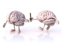 Relay between brains Stock Photography