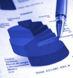 Relazione sullo stato di avanzamento di affari Immagine Stock Libera da Diritti