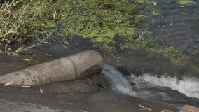 Release waste into the lake from the pipe stock video