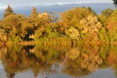 Relection d'Autumn Leaves Photographie stock libre de droits