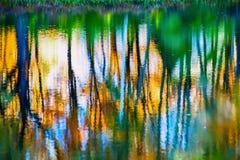 Relection dans l'eau Image stock