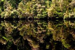 Relections, fleuve de Gordon Images libres de droits