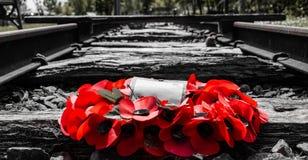 Relembrança Poppy Reef da trilha de estrada de ferro foto de stock royalty free