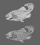 Relevo 3d dos peixes Fotos de Stock