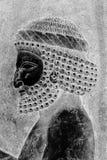 Relevo em Persepolis Imagem de Stock