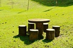 Relex na luz do sol em um parque verde Imagem de Stock Royalty Free