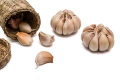 Reliance garlic harvest. Isolated and a white background.  clipping path Royalty Free Stock Images