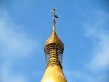 Relics of Buddha. Place - Global pagoda, Mumbai , India royalty free stock images