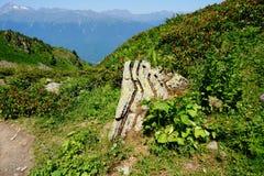 Relict βράχος Στοκ εικόνες με δικαίωμα ελεύθερης χρήσης