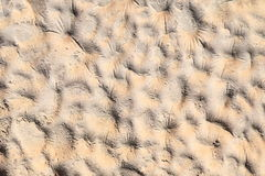Relief cement wall background Royalty Free Stock Photo