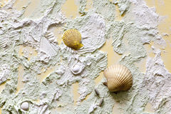 Relief of decorative cover with shells Stock Photography