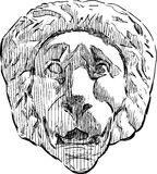 Relief of a lion head. Vector drawing of the antique architectural detail in form of lion head Royalty Free Stock Photos