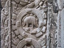 Relief of rare animal or Stegosaurus in Ta Prohm, Siem Reap. Siem Reap,Cambodia-December 23, 2017: Relief of Stegosaurus or an unknown animals is found on a Royalty Free Stock Photography