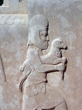 Relief sculpture, Persepolis Royalty Free Stock Photo