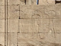 Relief at the Temple of Edfu in Egypt Royalty Free Stock Photo